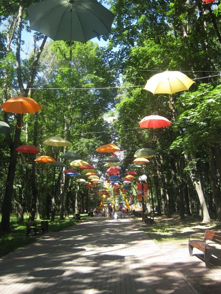 время химки парк имени толстого фото зонтики несложная прочная конструкция